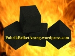 Coconut Shell Charcoal Briquettes Cube